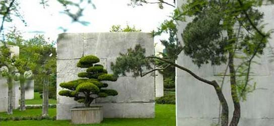 Музей деревьев