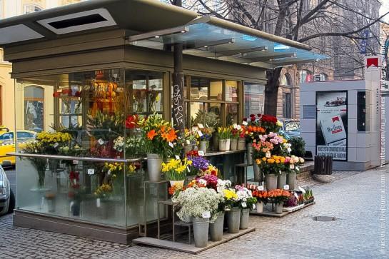 аренда цветочного павильона